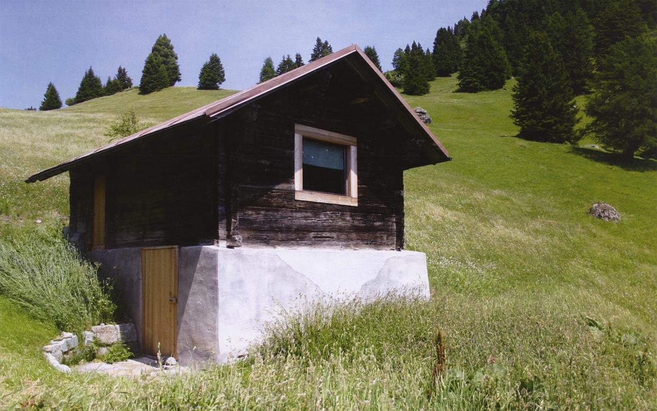 Mountain Cabin Arcdog